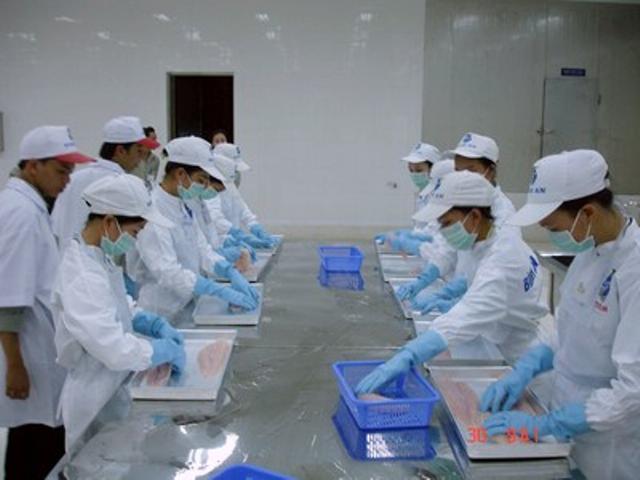 Tuyển 03 nữ Chế biến thủy sản tỉnh Fukuoka Nhật Bản